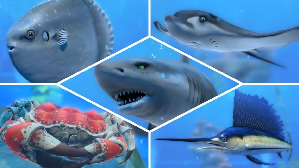 Nintendo Labo - Pesca