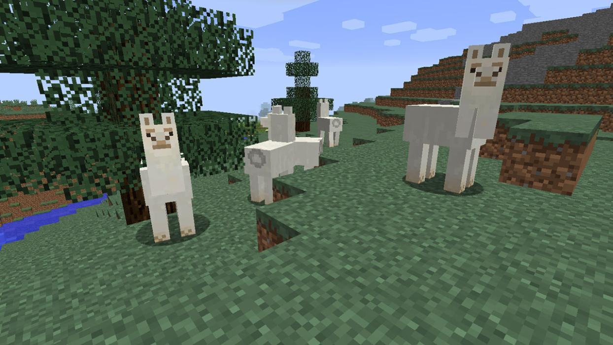 Cómo Domar Y Montar Una Llama En Minecraft Hobbyconsolas Juegos