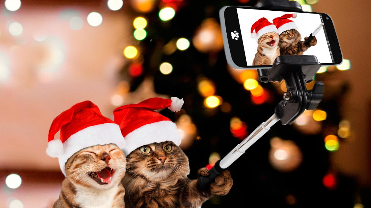 imagenes graciosas año nuevo