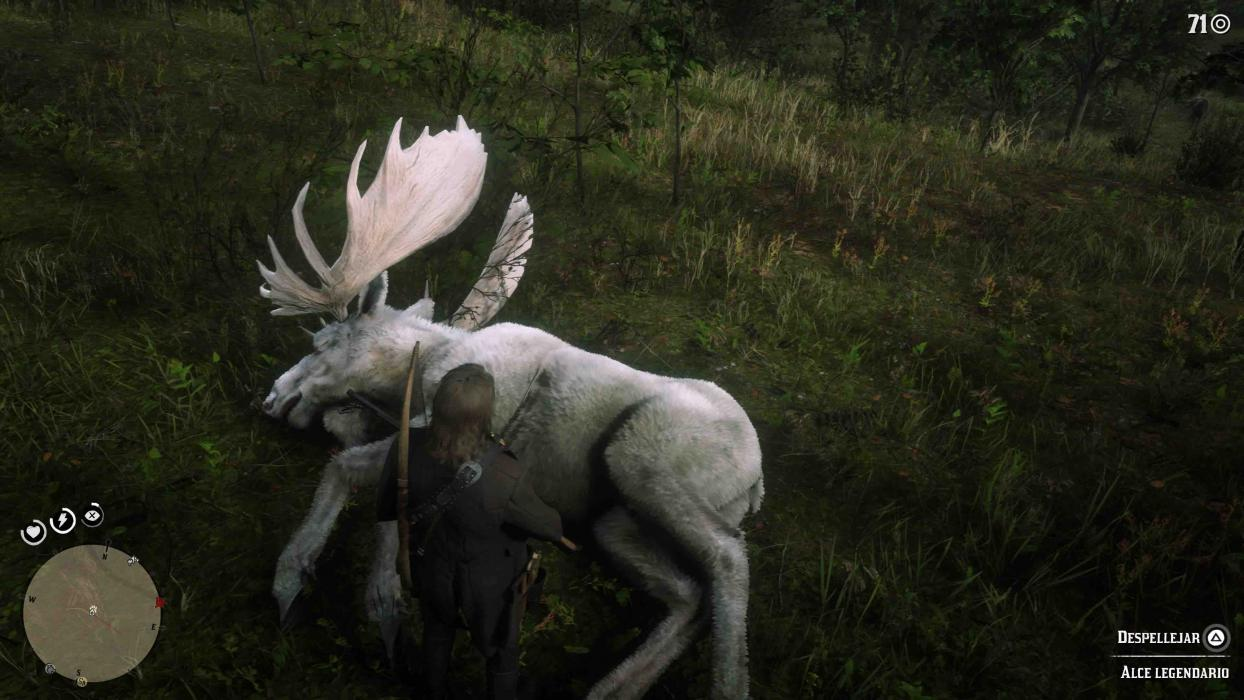 Donde encontrar todos los animales en Red Dead Redemption 2