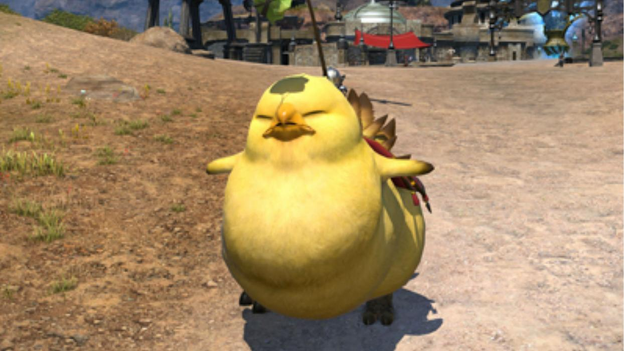 Final Fantasy Chocobo gordo