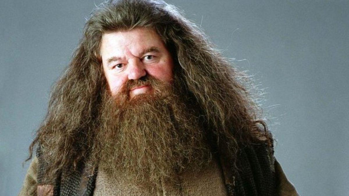 Hagrid de Harry Potter
