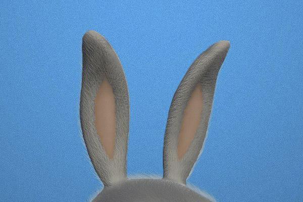 Torito Rabbit rediseñado